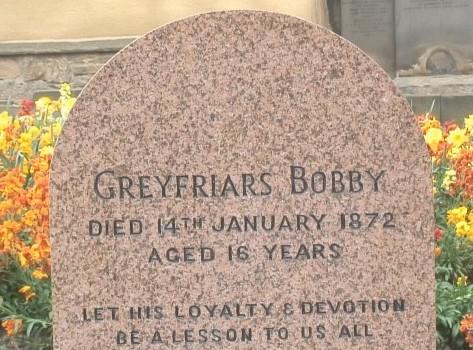 GreyFriarsBobby-2